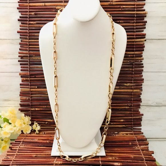 Coldwater Creek Gold Tone Link Long Necklace